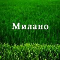 гербіцид Мілано - Мілагро 040 аналог